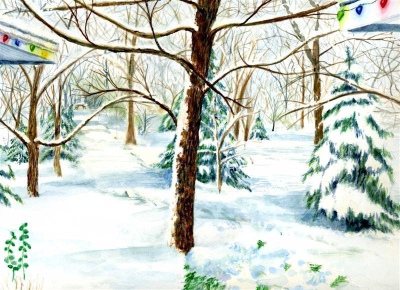 Christmas Lights the Snow